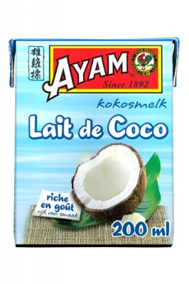 milk-de-coco-brick-200ml-v2_1912683809